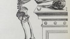 特別展「人体ー神秘への挑戦ー」 @ 国立科学博物館